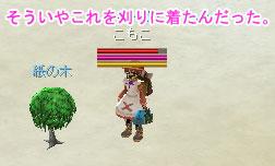 kaminoki_get.jpg