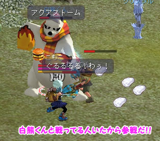 sirokuma_komo1.jpg