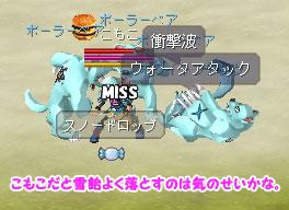 snowdrop_kd.jpg