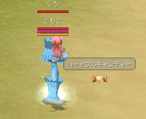 ss20060318_1.jpg
