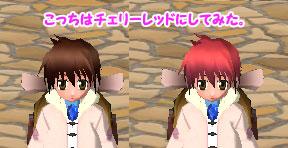 toroneko_cherryred_color.jpg