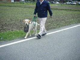 2008_06030040.jpg