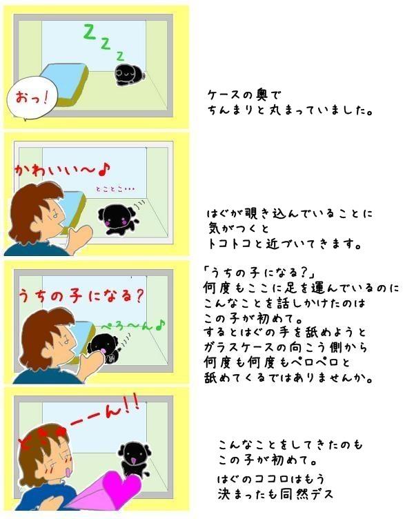 ユズとの出会い1-1