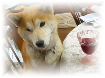 ワインと小梅