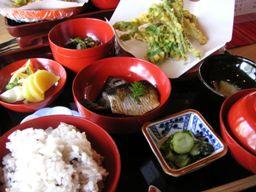 山菜の天ぷらににしん