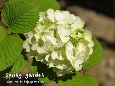 springgarden08