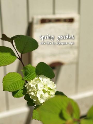 springgarden09