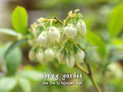 springgarden14
