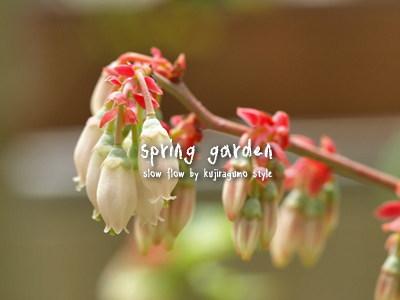 springgarden16