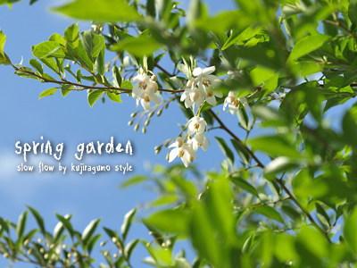 springgarden19