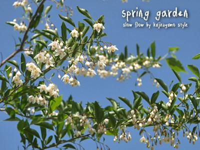 springgarden20
