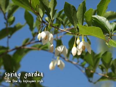 springgarden22