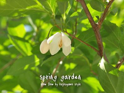 springgarden23