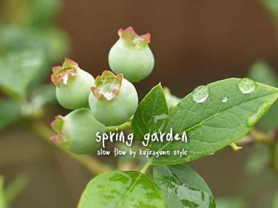 springgarden27