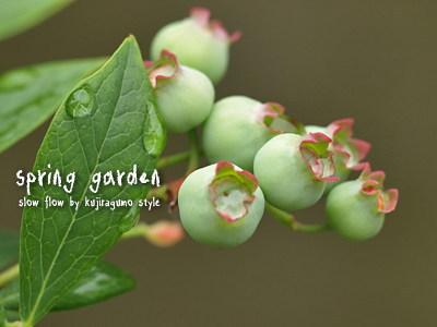 springgarden28