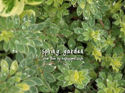 springgarden32