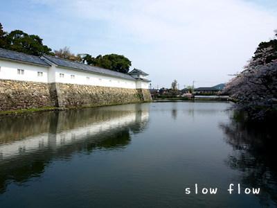 hikone19