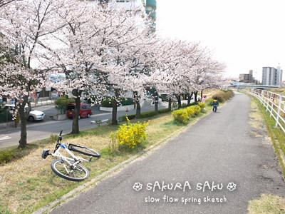 sakurasaku01