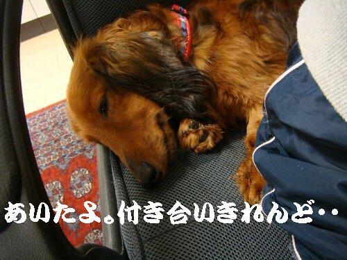 purinsu-004.jpg