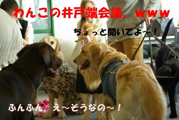 08井戸端会議