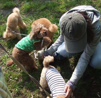 西郷山公園で優桃親子と遭遇