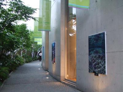 水中写真家・中村卓哉写真展  「命育むサンゴ礁の海」~Coral Garden~