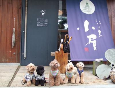 江ノ島の和食屋さん『小屋』(コヤ)