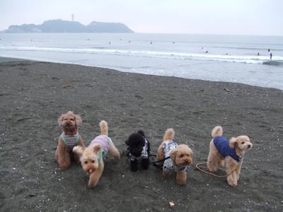 湘南の海で記念撮影2