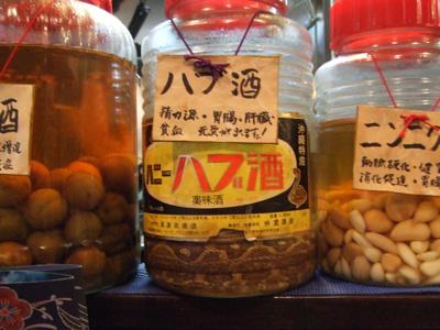 沖縄倶楽部「源さん」 ハブ酒
