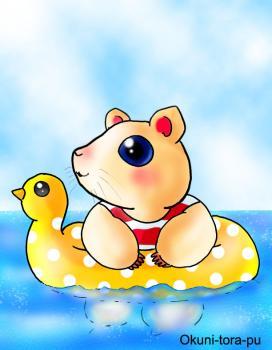 ハムちゃん海で泳ぐ