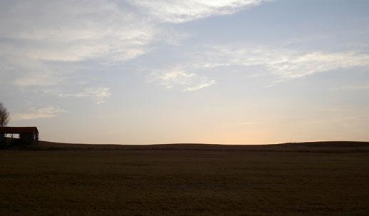 裏の丘3(日が落ちてしまった)(ノω・、) ウゥ・・・