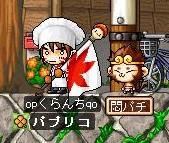 Maple20080708a.jpg