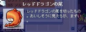 Maple20080713h.jpg