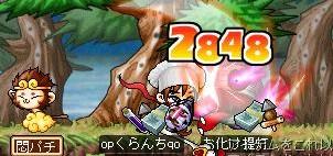 Maple20080722f.jpg