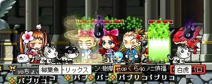 girukura200806032.jpg