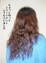 20070321152551.jpg