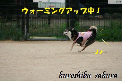 IMG_9613.jpg