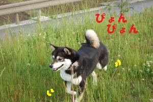 s_DSCF0509.jpg