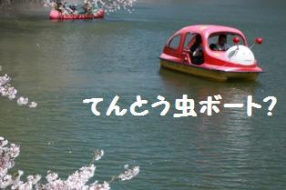 てんとう虫ボート