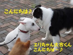 エリ&大吉