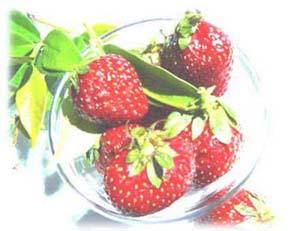 sberry2_p3.jpg