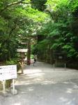 isokokami_20080607_02.jpg