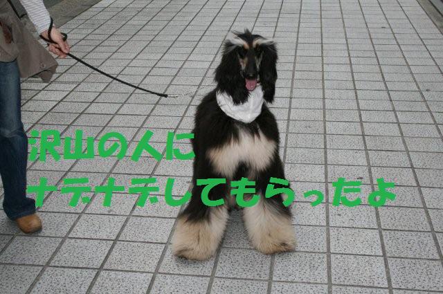 神戸異人館20.4.13 022 (2)