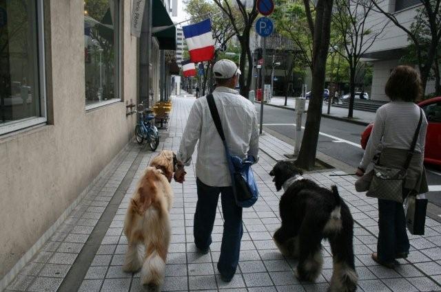 神戸異人館20.4.13 026 (2)