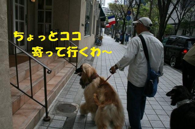 神戸異人館20.4.13 025 (2)0