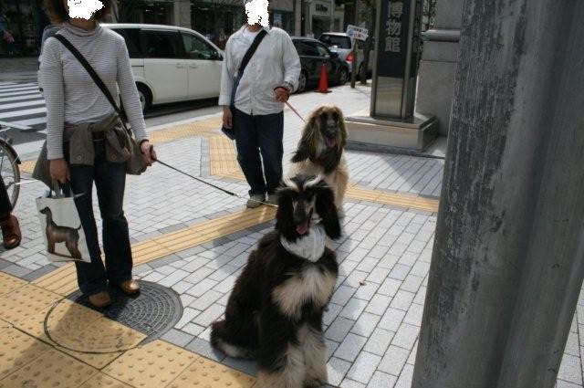 神戸異人館20.4.13 038 (2)0