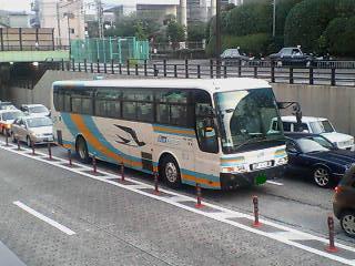 F1003028.jpg