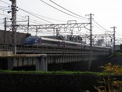 P8011441.jpg