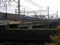 P8011442.jpg
