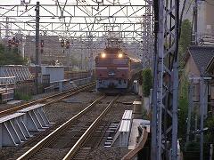 P8011474.jpg